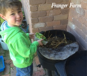 The micro farmer feeds the worms,