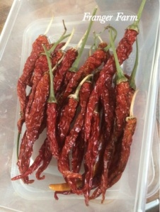 Whole, dried chilies.