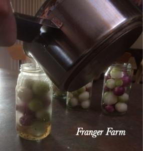 Pour vinegar mixture over onions.