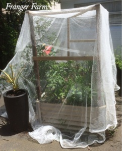 Make a frame for nets to keep pests out.